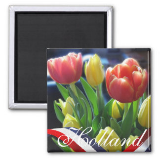 Red Yellow Dutch Tulips Holland Fridge Magnet
