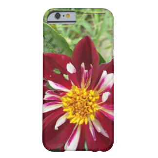 Red/yellow flower Cell Phone and Ipad case