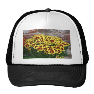 Red Yellow Flowers against brown red brick wall Cap