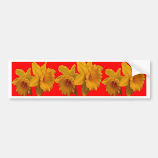 RED-YELLOW GARDEN DAFFODILS ART BUMPER STICKER