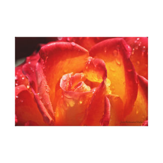 Red & Yellow Rose Canvas Stretched Canvas Print