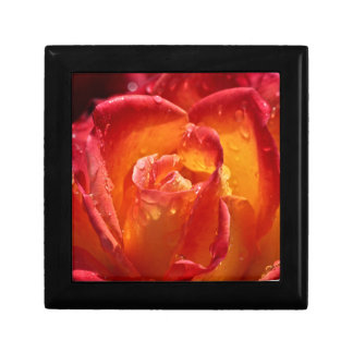 Red & Yellow Rose Small Square Gift Box