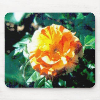 red-yellow roses #36 mouse pad