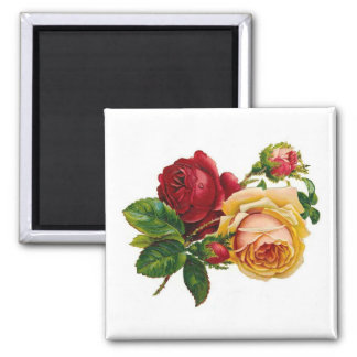 Red & Yellow Roses Square Magnet