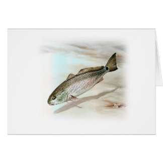 Redfish Art Card