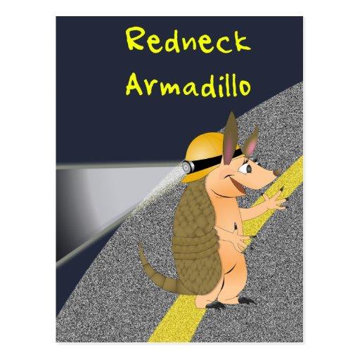 Redneck Armadillo Postcard