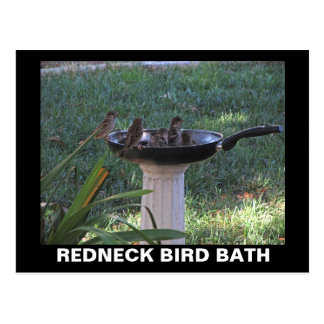 Redneck Bird Bath Postcard