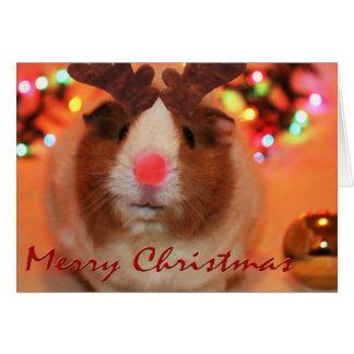 Rednose Christmas Card