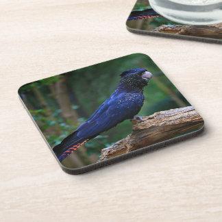 Reductor blue cockatoo coasters