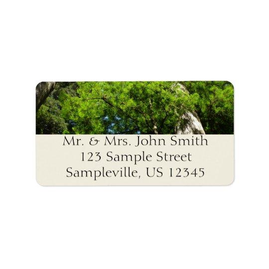 Redwood Boughs in Redwood National Park Address Label