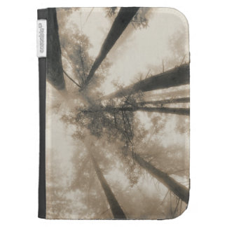 Redwood Forest Northern California Kindle Keyboard Cases
