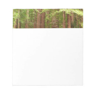 Redwood Trees at Muir Woods National Monument Notepad