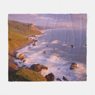 Redwoods coastline, California Fleece Blanket