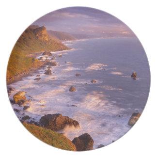 Redwoods coastline, California Plate