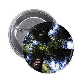 Redwoods Pinback Button