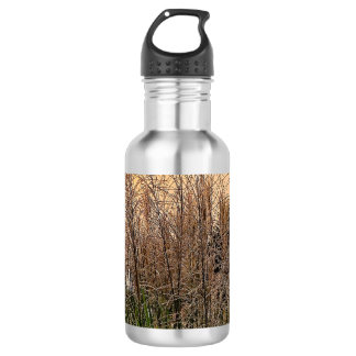 Reed At Sunset 532 Ml Water Bottle