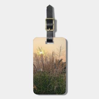 Reed At Sunset Bag Tag