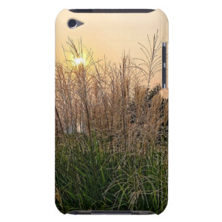 Reed At Sunset Barely There iPod Cover