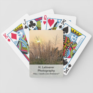 Reed At Sunset Bicycle Playing Cards