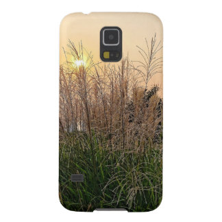 Reed At Sunset Galaxy S5 Case