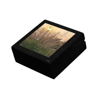 Reed At Sunset Gift Box