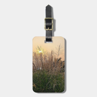 Reed At Sunset Luggage Tag