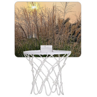 Reed At Sunset Mini Basketball Hoop