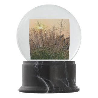 Reed At Sunset Snow Globe