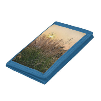 Reed At Sunset Trifold Wallets