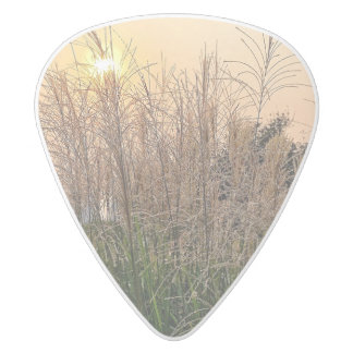 Reed At Sunset White Delrin Guitar Pick