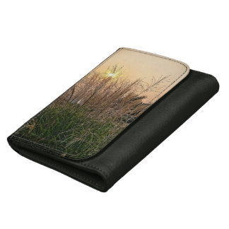 Reed At Sunset Women's Wallets