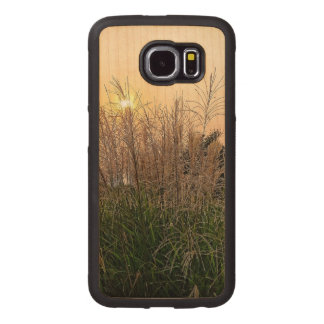Reed At Sunset Wood Phone Case