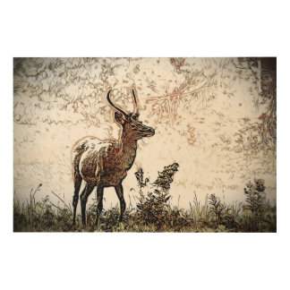 Reedbuck Wood Print