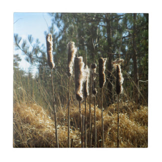 Reeds in the Wind Small Square Tile