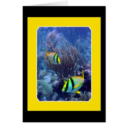 Reef - Ambergise Caye - Belise Card