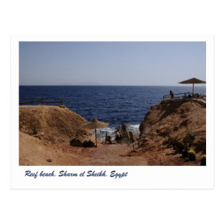 Reef beach, Sharm el Sheikh, Egypt Postcard