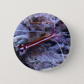 Reef collection button #5