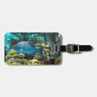 Reef Fish Custom Luggage Tag