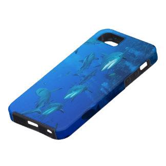 Reef Shark iPhone 5 Case