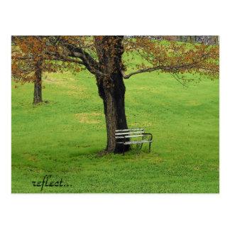 Reflect Postcard