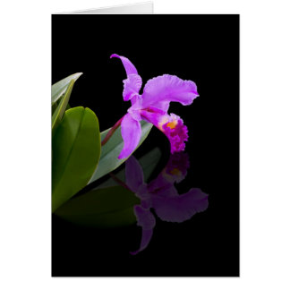 Reflected Beauty Orchid  Card