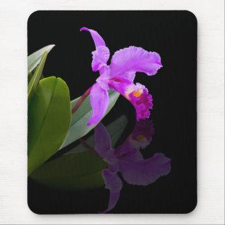 Reflected Beauty Orchid  Mousepad