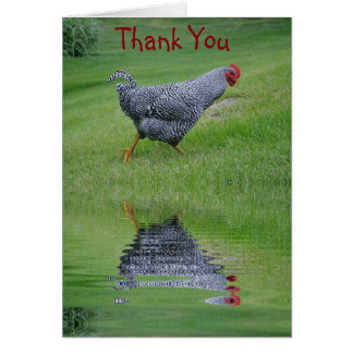Reflecting Chicken Thank You Card