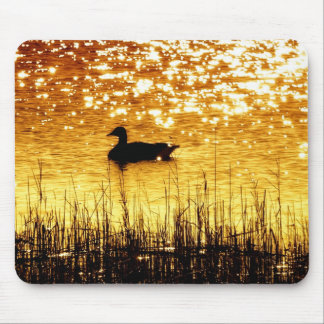 Reflecting On Nature Mouse Pad