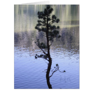 Reflection on the water big greeting card