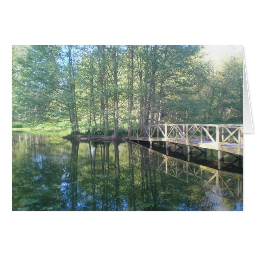 Reflections Greeting Cards