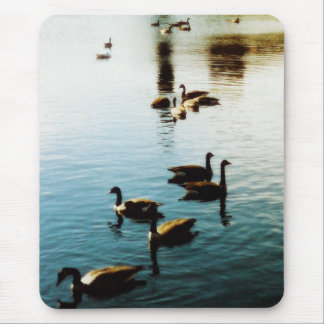 Reflections ducks & geese mousepad