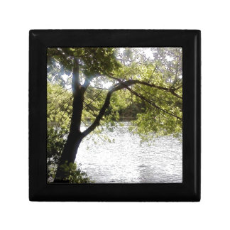 Reflections in the woods gift box