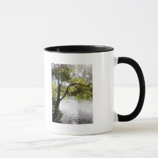 Reflections in the woods mug