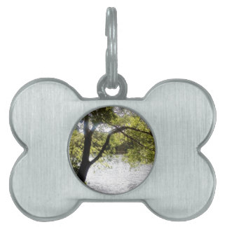 Reflections in the woods pet name tag